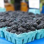 Berries.  photo credit: ...-Wink-... via photopin cc
